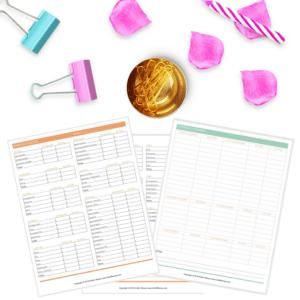 budgeting mini bundle