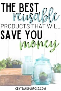 Wooden boxes and jars with plants in them and text that reads: The best reusable household products that will save you money